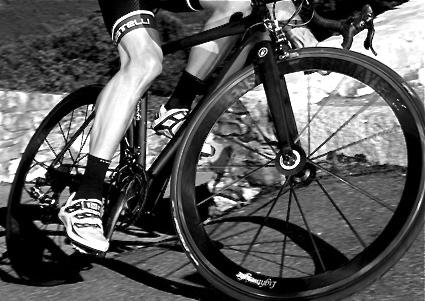 seguro de rueda lightweight